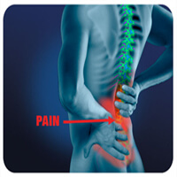spine back pain